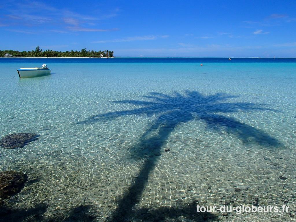 Maupiti - lagon et palmier