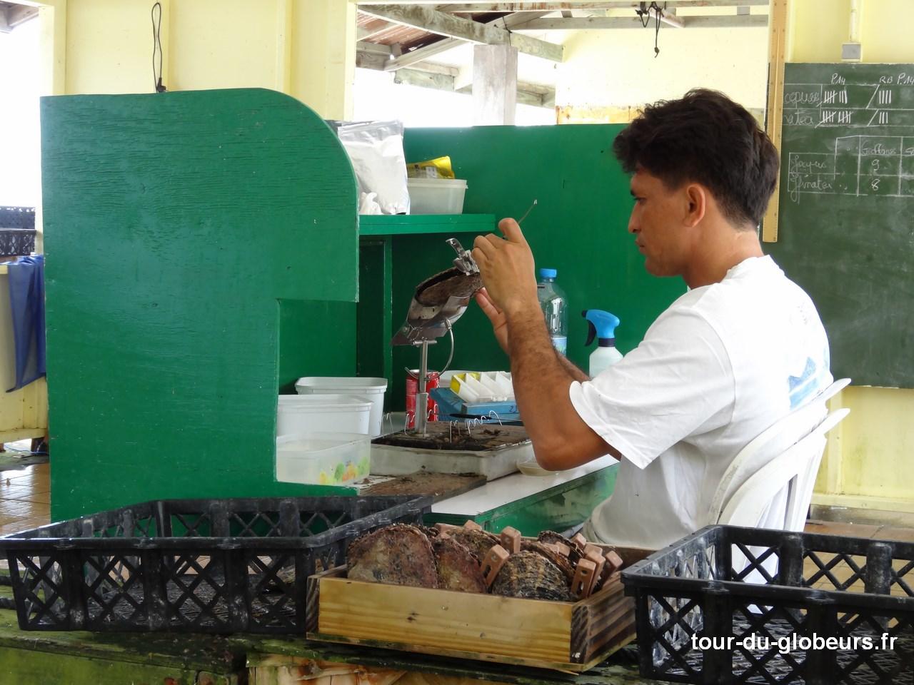 Aranui - Rangiroa - Ferme perlière